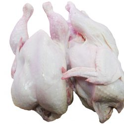 Бройлеры-цыплята 1 категории